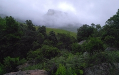 drakensberg-mountains-amphitheater-royal-natal-national-park-cascades-hike-fog