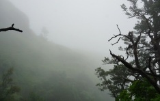 drakensberg-mountains-amphitheater-royal-natal-national-park-tiger-falls-hike-in-fog